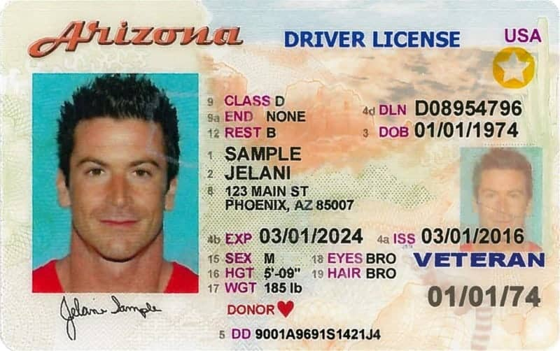 Travel Drivers License